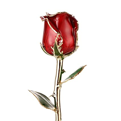 Valentine's Day Love Forever Beautiful Long Stem Gold Foil Trim Red Rose Flower Free Gift Box