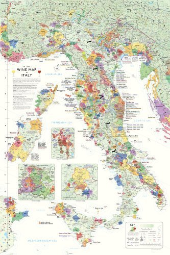 True Fabrication 1302 Wine Map of Italy, Multi Color