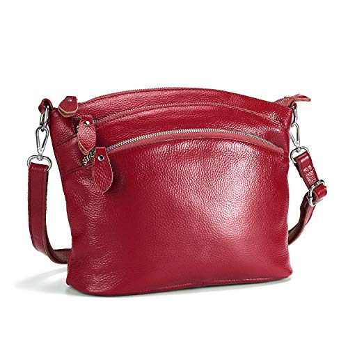 (Lecxci Small Luxury Genuine Leather Cross Body Purses, Zipper Makeup Smartphone Wallets, Over The Shoulder Bags for Women Teen Girls (4 Zipper Pockets - Burgundy Red))