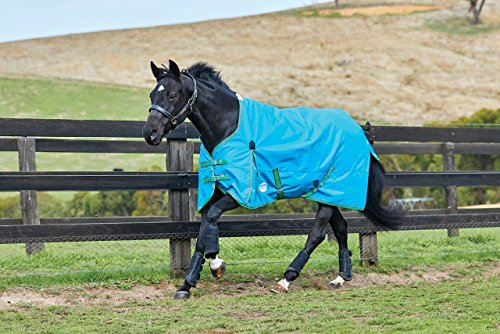 Weatherbeeta Comfitec Essential Standard Neck Lite Blue/Bright Green/Cerise 81