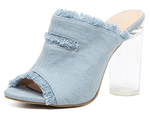 Mofri Women's Stylish Debin Fray Peep Toe Clear High Block Heel Slide on Mules Sandals (Blue, 4 B(M) US) ()