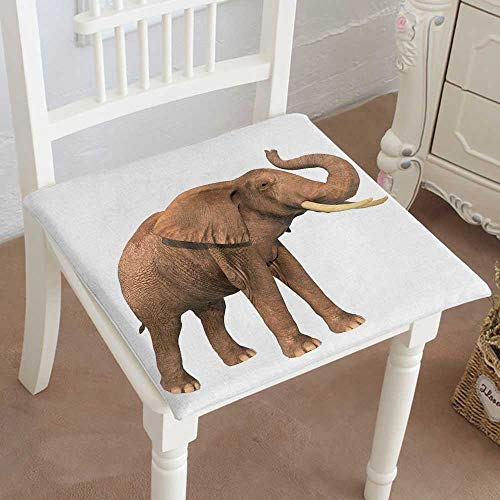 Mikihome Indoor/Outdoor All Weather Chair Pads Elephant with Trunk Raised on a White Background Seat Cushions Garden Patio Home Chair Cushions 28