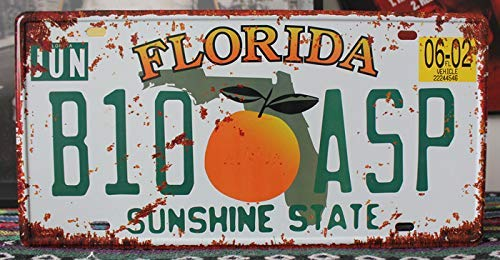 Plate Souvenir Wall (SIGNT Florieda B10-ASP Vintage Metal Tin Sign Auto License Plate Pub,Bar,Home Wall Decor Souvenir Hanging Embossed Tag Size 6 X 12 Inches)