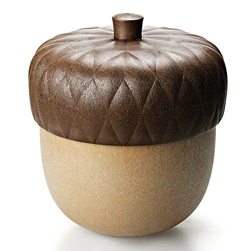 Sansukjai Acorn, Container, Container Storage, Container Plastic, Home Decor, Gift (Tables Sale Tampa For Pool)