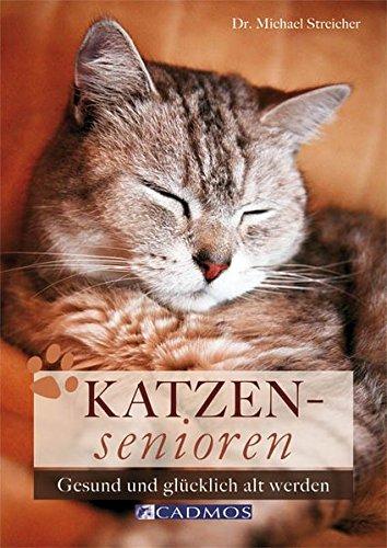 Katzensenioren: Gesund und glücklich alt werden