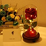 Beauty and The Beast Rose, Enchanted Rose and LED