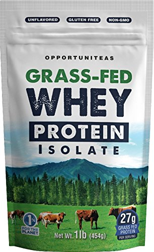 Grass Fed Whey Protein Powder Isolate - Unflavored + Cold Processed + Undenatured - Pure Wisconsin Grass-Fed Protein for Shake, Smoothie, Drink, or Food - Natural + Non GMO + No Gluten - 1 Pound ()
