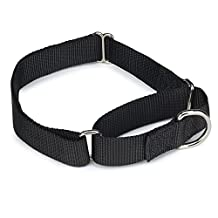 Guardian Gear Nylon/Metal Martingale Dog Collar, 10 to 16-Inch, Black