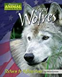 Gray Wolves, Meish Goldish, 1597165026