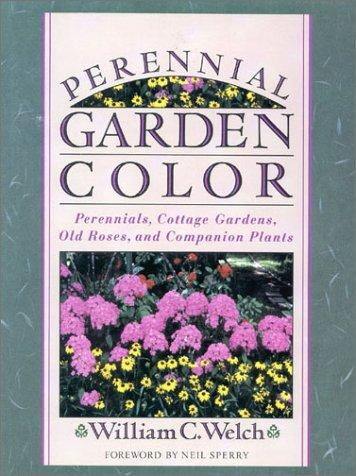 Perennial Garden Color (Sweet William Perennial)