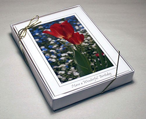 Crystal Clear Boxes - Cleartop Greeting Card Box, For 5