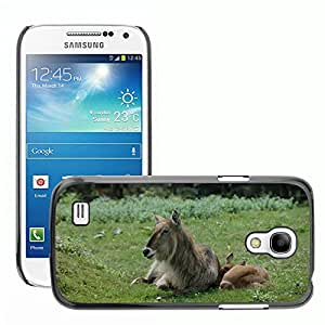 GoGoMobile Slim Protector Hard Shell Cover Case // M00118015 Animals Animal Mother Breeding // Samsung Galaxy S4 Mini i9190