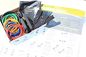 Resistance Bands Set - Exercise Fitness Tubing Bands With Handles - 11 PC Total, Up to 73 LB + Full-Color Band Workout Exercise Poster for Core Strength, Strength Training, Fat Loss, & Abs Toning