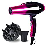 Professional Ionic Hair Dryer Powerful Salon Performance AC Motor...