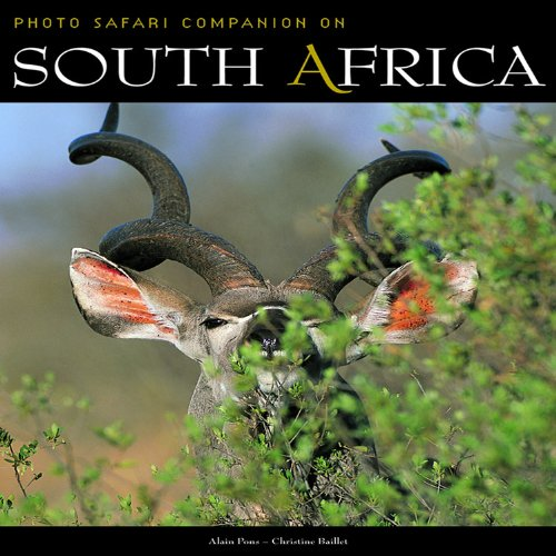 South Africa (Safari Companions)