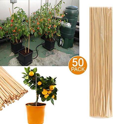 50 bastones de jardín de bambú para planta de crecimiento de ...