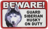 BEWARE Guard Dog on Duty Sign - Siberian Husky
