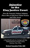 Injustice in the Eloy Justice Court: How the Domestic Violence Industry Places Men at Risk from Violent Women and False Arrest