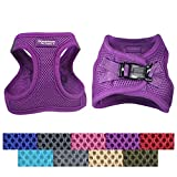 Downtown Pet Supply Best No Pull, Step in Adjustable Dog Harness with Padded Vest, Easy to Put on Small, Medium and Large Dogs (Purple, L)