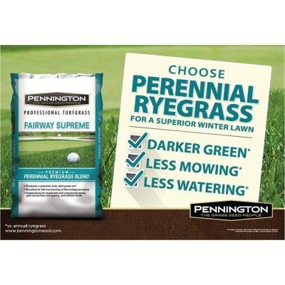 50 lb. Fairway Supreme Perennial Ryegrass Blend