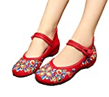 AvaCostume Women's Chinese Embroidery Casual Mary Jane Travel Walking Shoes Red 42