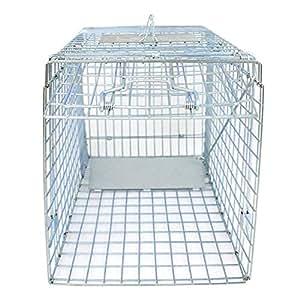 Amazon.com: JungleA - Jaula para roedores de 1 puerta ...