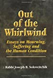 Download Out of the Whirlwind: Essays on Mourning, Suffering and the Human Condition (Meotzar Horav) in PDF ePUB Free Online