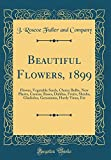 Amazon / Forgotten Books: Beautiful Flowers, 1899 Flower, Vegetable Seeds, Choice Bulbs, New Plants, Cannas, Roses, Dahlias, Fruits, Shrubs, Gladiolus, Geraniums, Hardy Vines, Etc Classic Reprint (J Roscoe Fuller and Company)