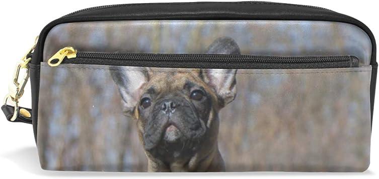 Estuche para lápices, diseño de bulldog francés: Amazon.es: Oficina y papelería