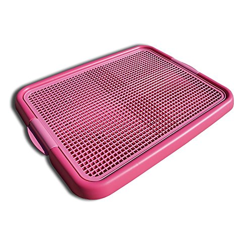 ANYPET Indoor Training Toilet, Hot Pink (Dog Pee Pad Holder)