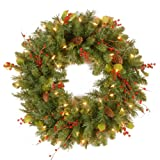 National Tree 24 Inch Classical Collection Wreath with Cones, Holly Leaves, Red Berries and 50 Clear Lights (CC1-301-24W-1)