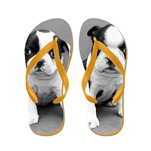 Cafepress Boston Terrier Valpar - Flip Flops, Roliga Rem Sandaler, Strand Sandaler Apelsin