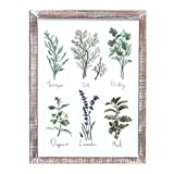 """pictures of outdoor kitchens Barnyard Designs Kitchen Herbs and Spices Wall Art Decor Botanical Print Sign Rustic Country Farmhouse Wood Plaque Framed Home Wall Decor 15.75"""" x 11.75"""""""