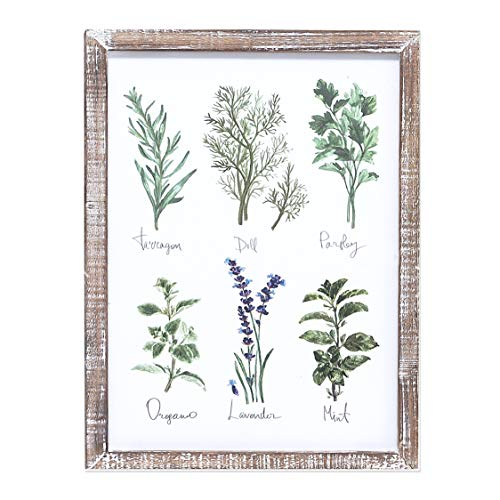 "Barnyard Designs Kitchen Herbs and Spices Wall Art Decor Botanical Print Sign Rustic Country Farmhouse Wood Plaque Framed Home Wall Decor 15.75"" x ()"