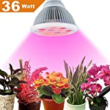 Cheap Topled Light® 36W Led Grow Light Bulb, E27 Miracle Growing Plant Light for Hydropoics Greenhouse Organic Plant Indoor Garden(36W)