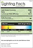 Catalina Lighting 21903-000 Transitional 6