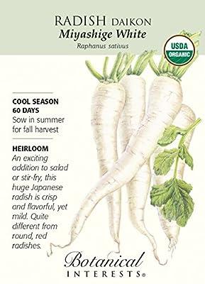 Miyashige White Daikon Radish Seeds - 2 g - Organic