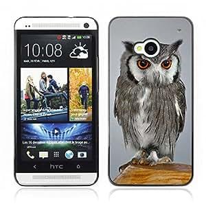 Super Stellar Slim PC Hard Case Cover Skin Armor Shell Portection // Owl V0000057 // HTC ONE M7