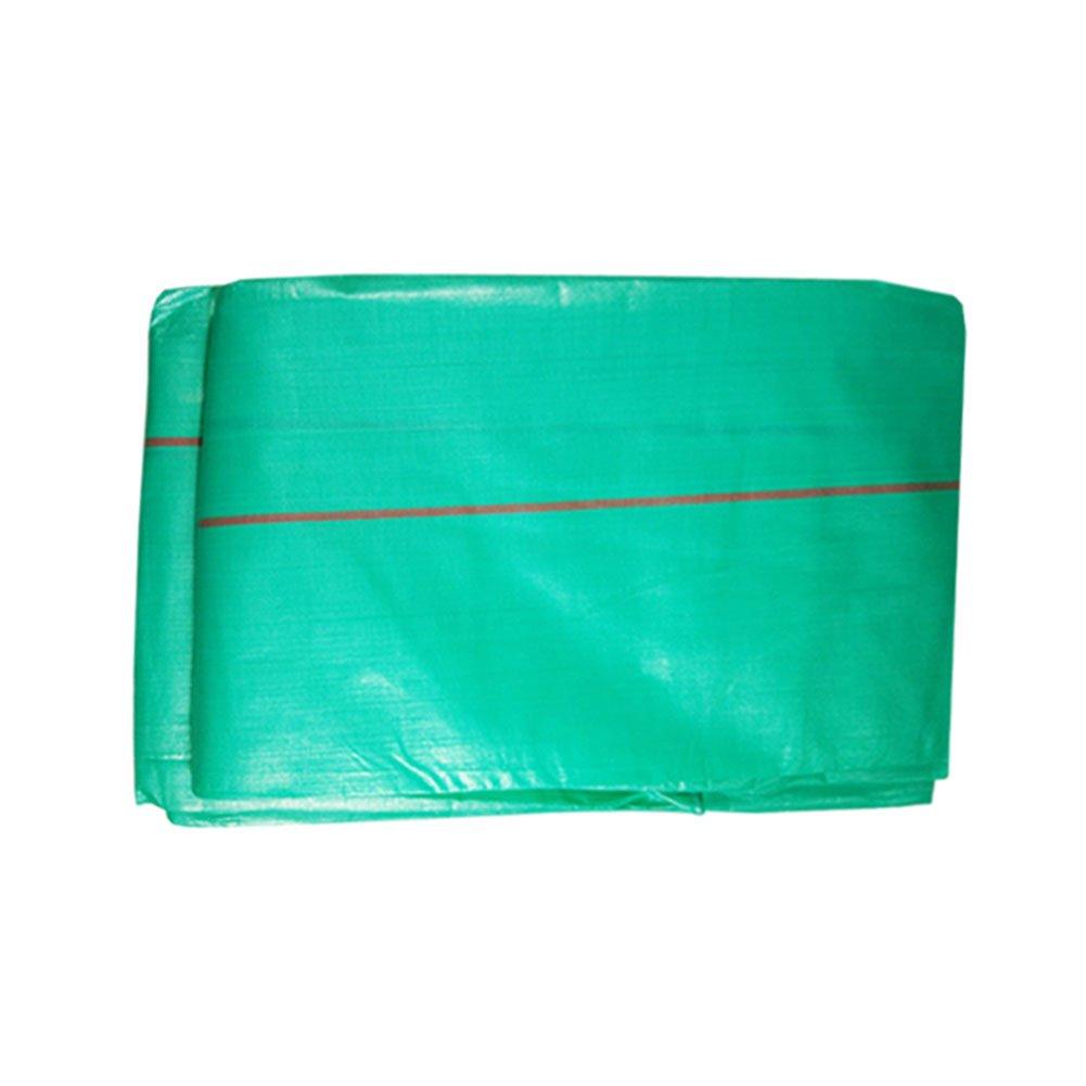 CHAOXIANG オーニング 厚い 折りたたみ可能 両面 防水 耐寒性 アンチサン シェード 耐摩耗性 軽量 老化防止 PE 緑、 220g/m 2、 厚さ 0.38mm、 13サイズ (色 : 緑, サイズ さいず : 8×10m) B07DC48VXS 8×10m|緑 緑 8×10m