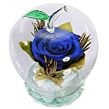 SANRAN Preserved Real Rose, Decor with a Apple-Shaped Glass, Eternal Flowers,Immortal Rose,Never Withered , is a for Valentine's Day/Mother's Day/Girlfriend's Birthday (Blue)