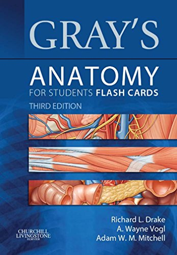 Gray's Anatomy for Students Flash Cards (3rd 2014) [Drake, Vogl & Mitchell]