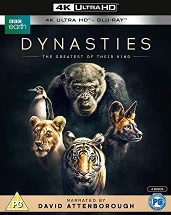 Dynasties - The Greatest of Their Kind - Attenborough [4k UHD + Blu-ray]