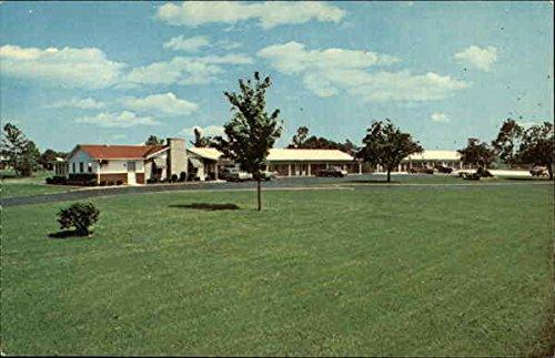 motel-6-t-7-indianapolis-indiana-original-vintage-postcard