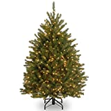 National Tree Dunhill 4 Foot Fir Tree with 200 Clear Lights