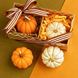 Tinksky Set of Pumpkin Shaped Candles Halloween Party Decoration Thanksgiving Day Gift children's party Decoration (White + Orange)
