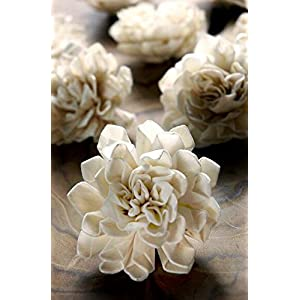 """Richland Folded Sola Flowers 2"""" 49"""