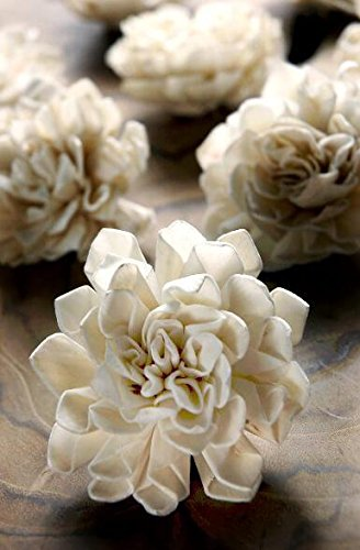 Richland Folded Sola Flowers 2