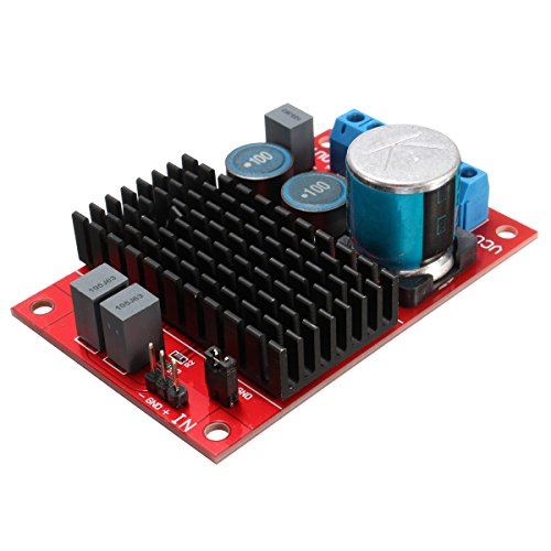 ELEGIANT BTL Output Amplifier Board, TPA3116 DC 12V-24V Mono 100W Channel Digital Power Audio Amplifier Board