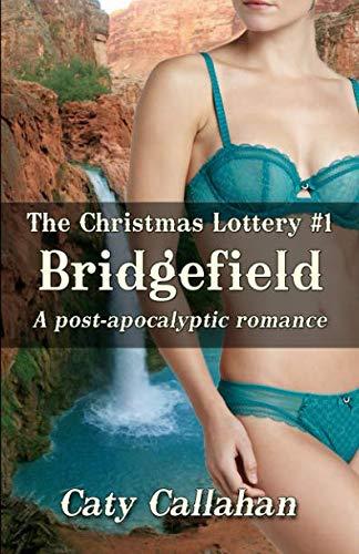 THE CHRISTMAS LOTTERY, BOOK 1: BRIDGEFIELD (Draws Christmas Lottery)