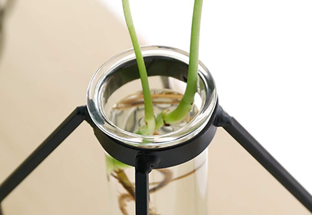 1 terrario Geometrico da Tavolo scrivania per Fai da Te Small espositore Decorativo vasi da Fiori artistici in Vetro con Supporto cilindrico in Metallo Trasparente Saiko